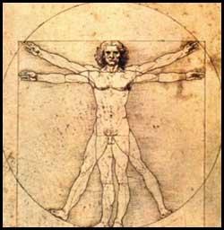 [RP] - Petit précis sur la lycanthropie Anatomie-humain-303e85a