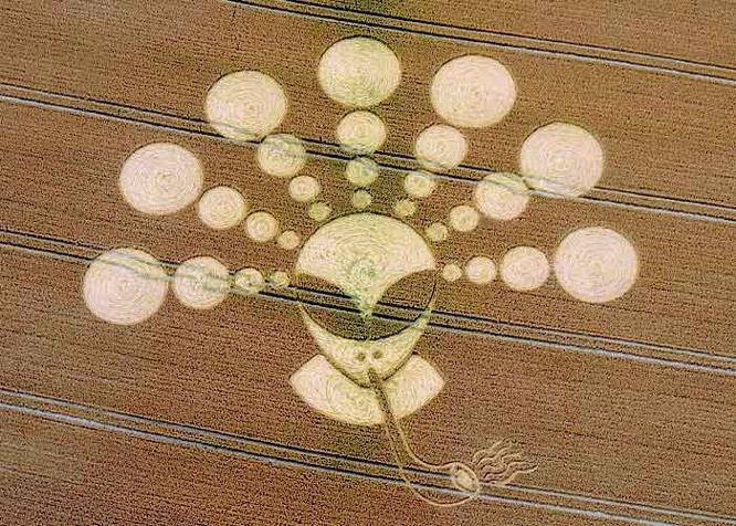 Crop Circle 2011  - Page 11 Gb927-2b42312
