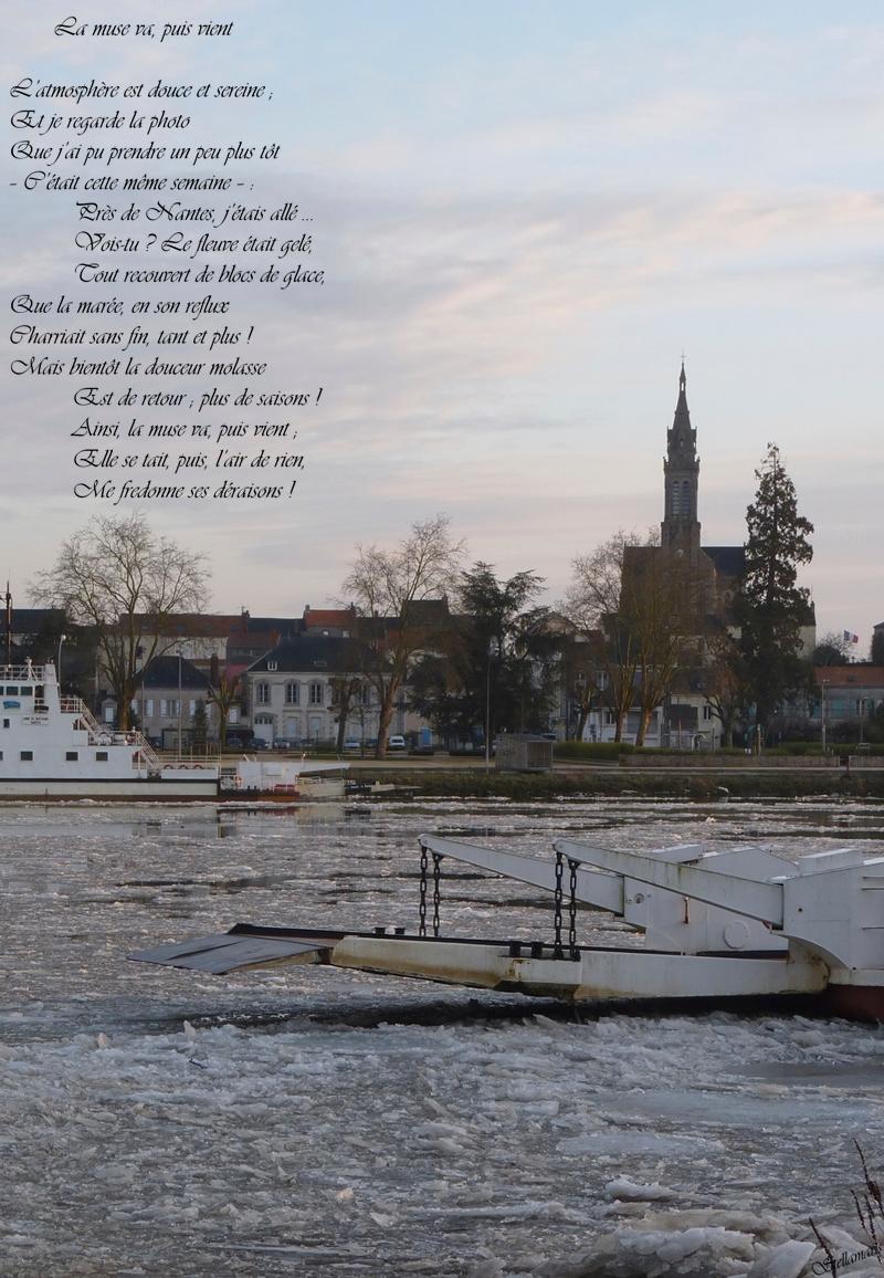La muse va, puis vient / / L'atmosphère est douce et sereine ; / Et je regarde la photo / Que j'ai pu prendre un peu plus tôt / – C'était cette même semaine – : / / Près de Nantes, j'étais allé ... / Vois-tu ? Le fleuve était gelé, / Tout recouvert de blocs de glace, / / Que la marée, en son reflux / Charriait sans fin, tant et plus ! / Mais bientôt la douceur molasse / / Est de retour ; plus de saisons ! / Ainsi, la muse va, puis vient ; / Elle se tait, puis, l'air de rien, / Me fredonne ses déraisons ! / / Stellamaris